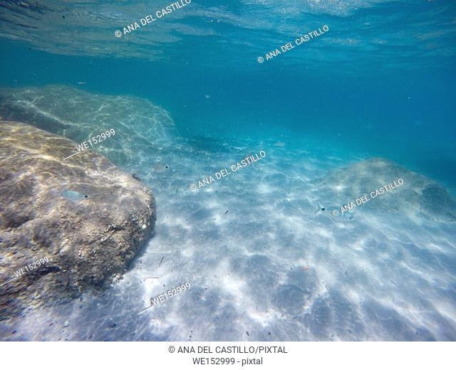 Underwater image at Mediterranean sea Tabarca island Alicante Spain