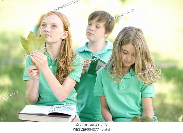 Group of pupils with exercise books and leaves in a park
