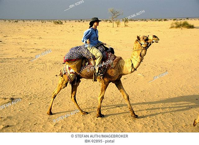 Camel trekking young woman wearing a hat is riding a camel in sand in wide open Thar desert near Jaisalmer Rajasthan India
