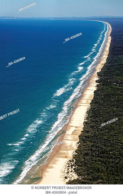 Aerial view 75 Mile Beach Road, official Highway, UNESCO World Heritage Site, Fraser Island, Great Sandy National Park, Queensland, Australia