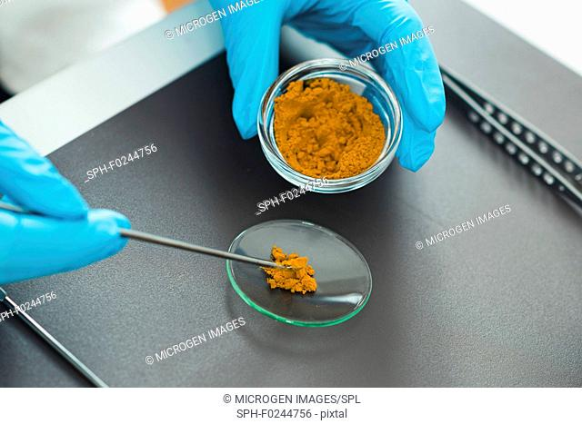 Quality control expert inspecting turmeric in the laboratory