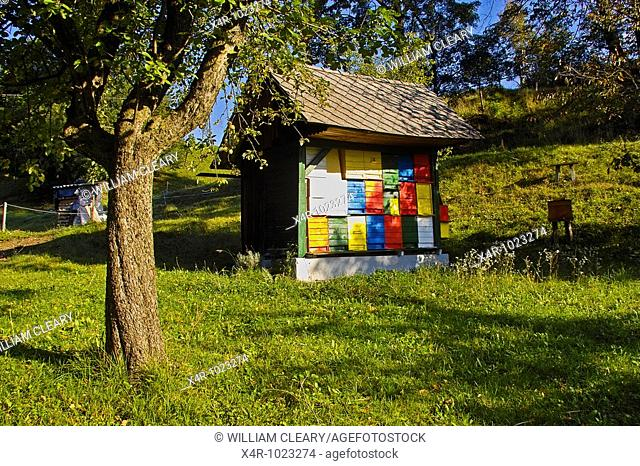 Colourful beehives in Slovenia