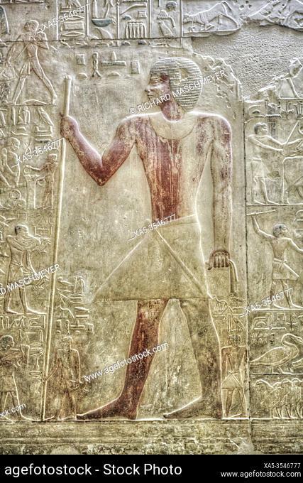 Reliefs, Mastaba of Akhethotep, Necropolis of Saqqara, UNESCO World Heritage Site, Saqqara, Egypt