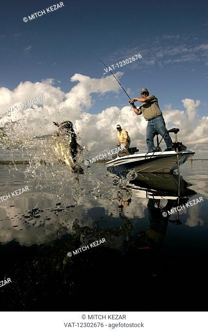 Bass Fisherman On Boat