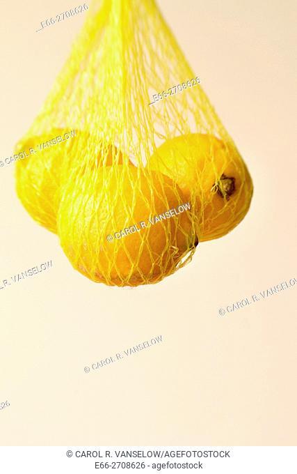 Lemons hanging in net, white background