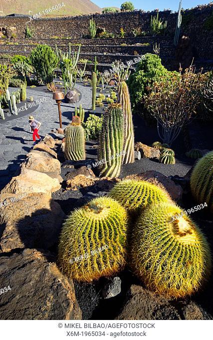 Jardin de Cactus (Cactus Garden) of Cesar Manrique