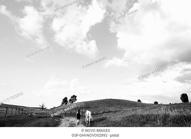 Young Women in Black Dress Walking Horse Along Rural Path in Field, Rear View