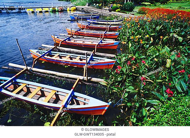High angle view of rowboats moored at a riverbank, Bali, Indonesia