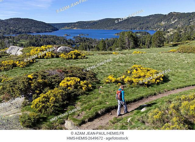 France, Pyrenees Orientales, Les Angles, Bouillouses lake, natural site
