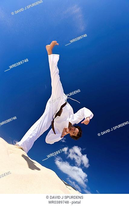 Martial Artist high kick