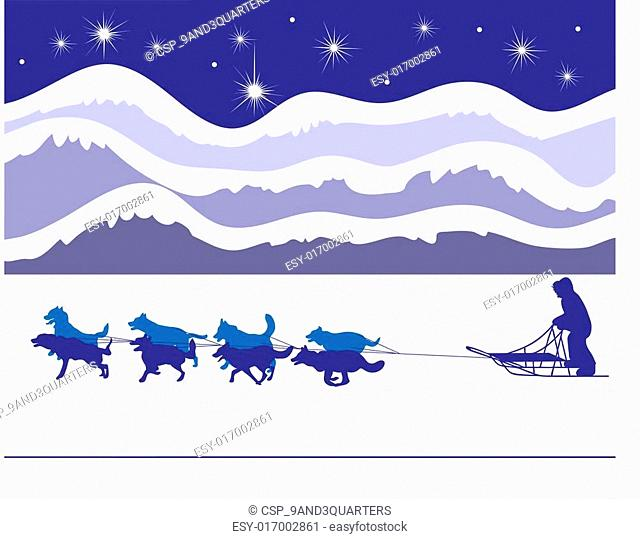 Musher and sled dogs by starlight