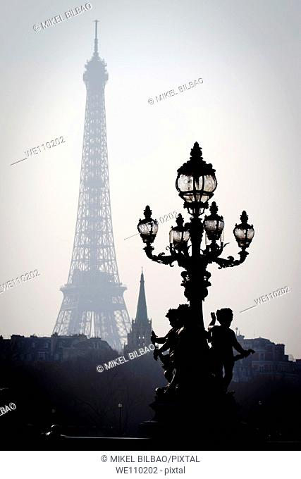 Eiffel Tower from the Alexandre III bridge  Paris, France