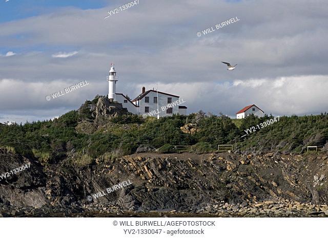 Lighthouse Lobster Cove Head Newfoundland and Labrador