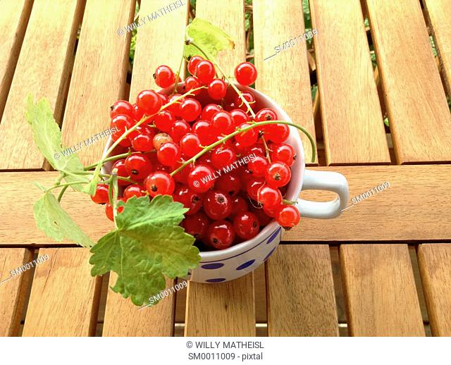 red currant in cup