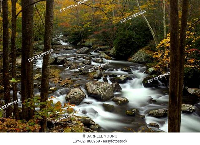 Little Pigeon River in Autumn at Great Smoky Mountains National Park