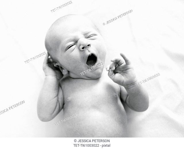 Portrait of newborn boy ( 0-1 months ) yawning