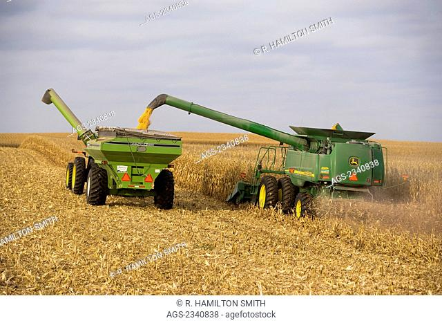 "Agriculture - A John Deere combine harvests grain corn and unloads into a grain cart ""on-the-go""/ near Northland, Minnesota, USA"