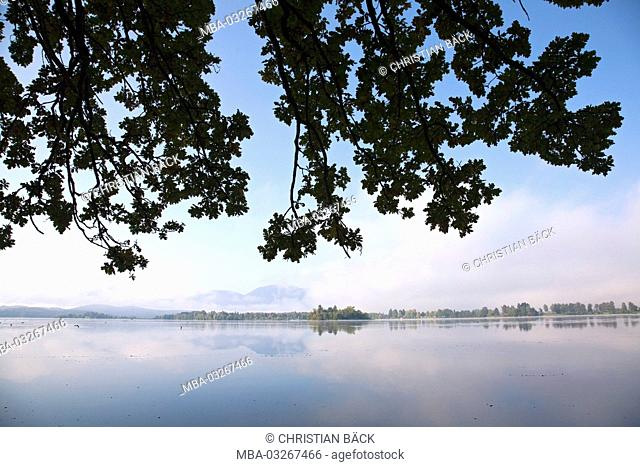 View over the Staffelsee, Uffing, Upper Bavaria, Bavaria, Germany