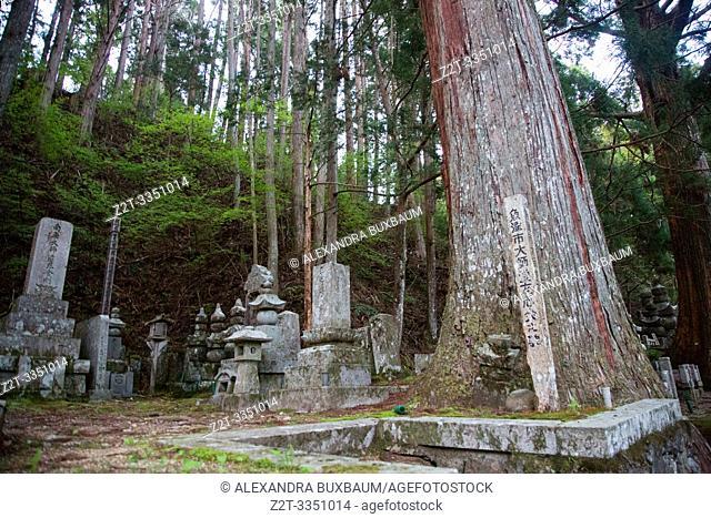 Okuno-In Cemetary, Koyasan, Japan