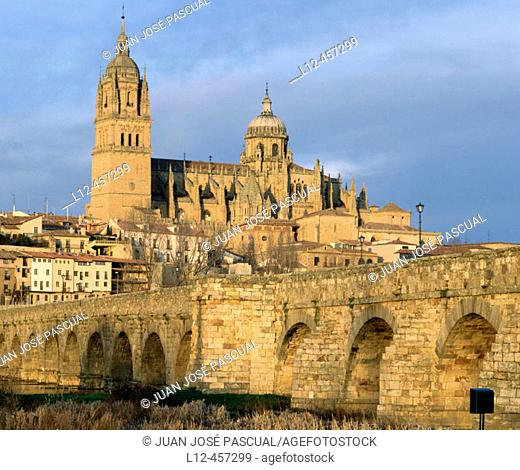 Roman bridge and cathedral, Salamanca. Castilla-León, Spain