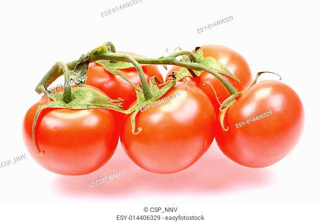 The fresh juicy tomatoes