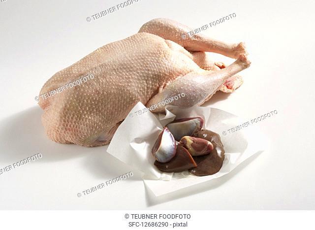 Raw turkey with liver