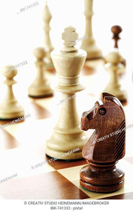 Chess pieces - knight, king, pawns and queen on chess board