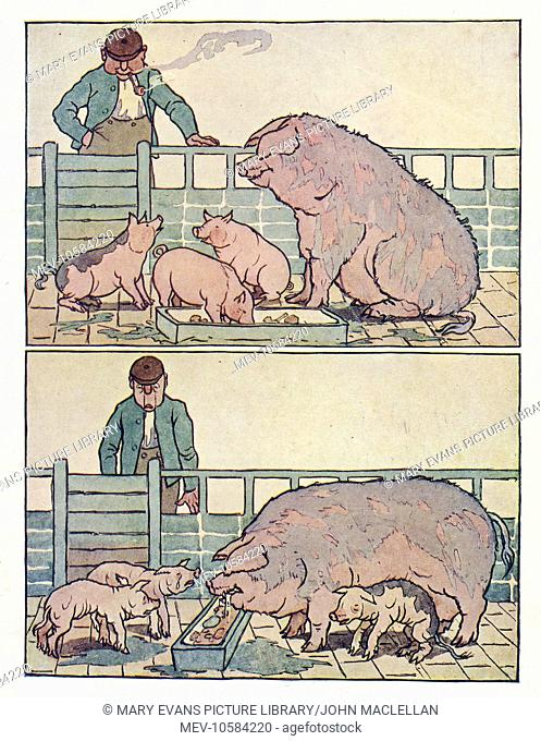 Nursery Rhymes -- a man watching pigs in a sty. In the first illustration the pigs are plump and happy, but in the second they are thin and crying