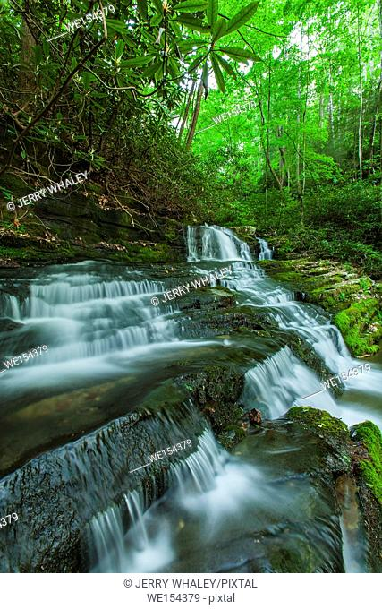 Waterfalls on Rhododendron Creek in Greenbrier, Great Smoky Mountains National Park , TN