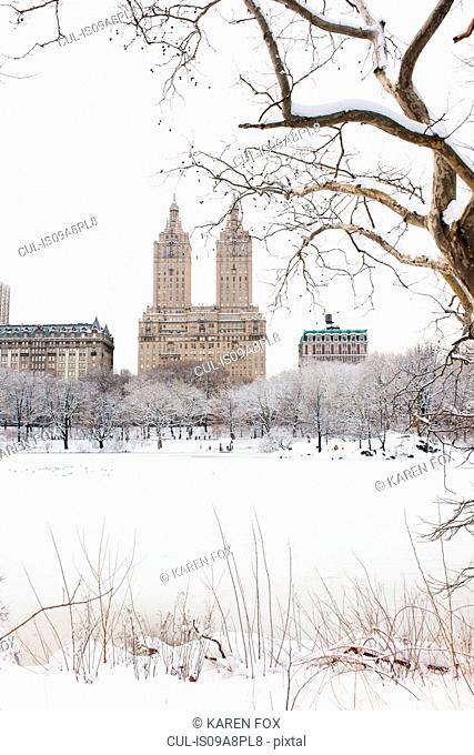 View of The San Remo and Dakota Buildings from lake in winter, Central Park, Manhattan, New York City, USA