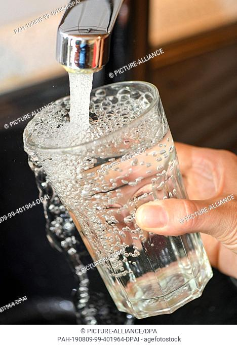 08 August 2019, Brandenburg, Sieversdorf: At the tap in a kitchen a drinking glass is filled with tap water. Photo: Patrick Pleul/dpa-Zentralbild/ZB