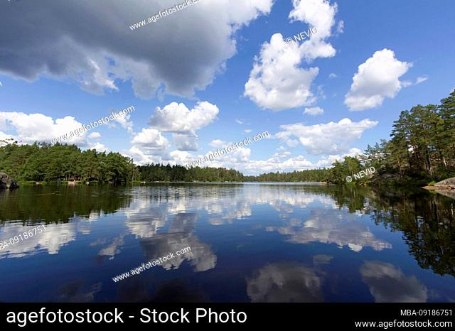 Characteristic Scandinavian lake, surrounded by pine trees, Sweden, Tyresta National Park