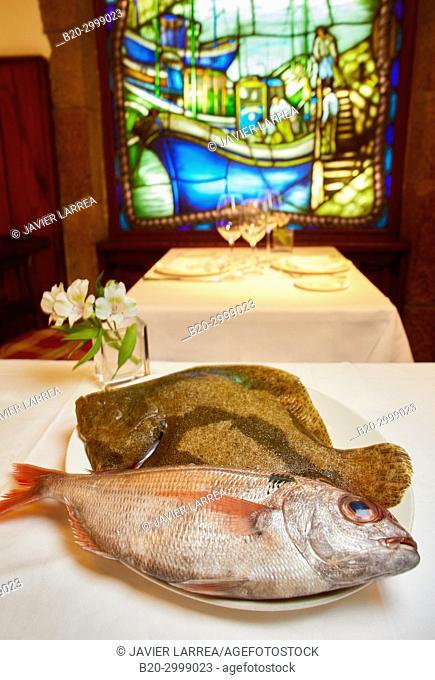 Sea bream and turbot, Restaurante Juanito Kojua, Parte Vieja, Old Town, Donostia, San Sebastian, Gipuzkoa, Basque Country, Spain