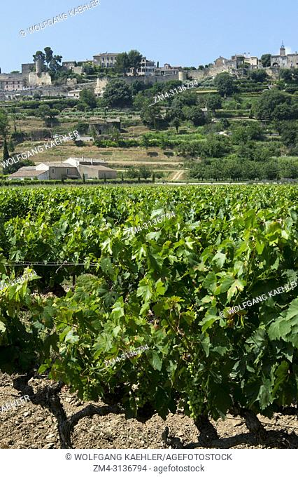 View of vineyards and Menerbes, a small village on a hill between Avignon and Apt, in the Luberon, Provence-Alpes-Cote d Azur region in southern France