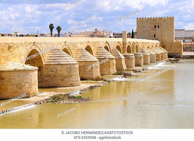 Roman bridge on the river Guadalquivir. Córdoba. Andalusia. Spain