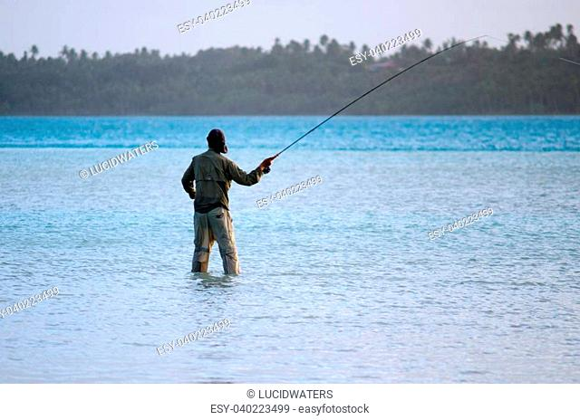 AITUTAKI - SEP 19:Fisherman casting for bonefish on Sep 19 2013.It's world's best place for fly fishing Bonefish that known for been the strongest and fastest...