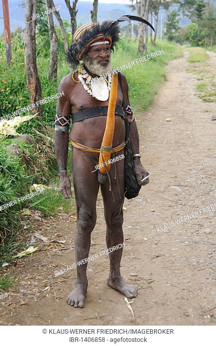 Dani, grandfather in traditional costume, Wamena, Irian Jaya or West Papua, New Guinea, Indonesia, Southeast Asia
