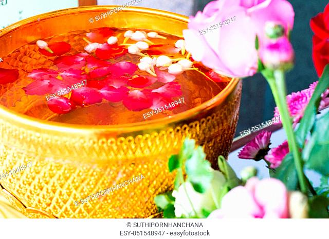 Songkran festival in Thailand, It use the water pouring to Buddha statue and older. Cost-up, Clipping path