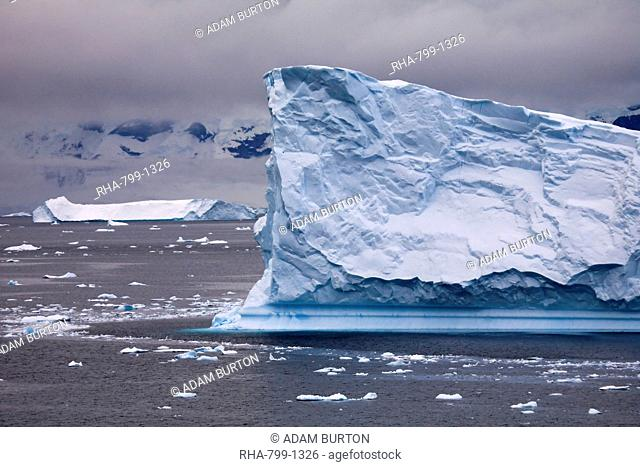 Magnificent icebergs in a cloud filled Antarctic Peninsula, Antarctica, Polar Regions