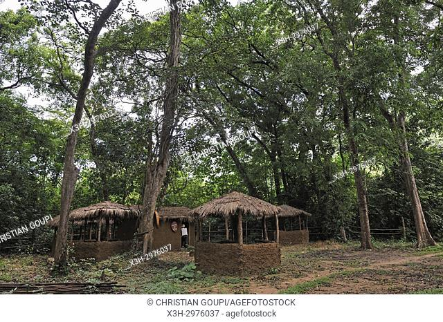 reconstruction for tourism purpose of a Vedda village, a minority indigenous goup, Gal Oya National Park, Uva province, Sri Lanka, Indian subcontinent