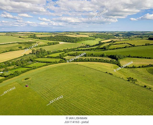 Aerial View Of Green English Farm Fields In Dorset