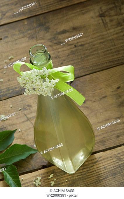 elderberry sysup