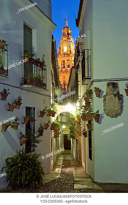 Flower Alley and Tower of the Great Mosque/Cathedral, Cordoba, Region of Andalusia, Spain, Europe
