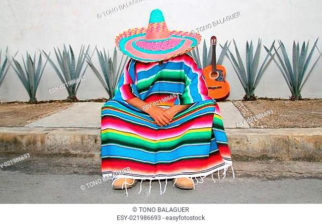 Mexican lazy man sit serape agave guitar nap siesta