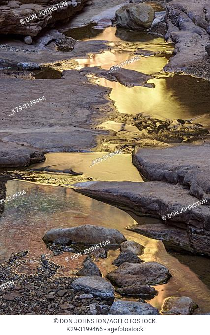 Water stained rocks and reflecting pools in Blacktail Canyon, Grand Canyon National Park, Arizona, USA
