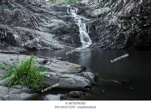 Cedar Creek waterfall in Mount Tambourine, Queensland
