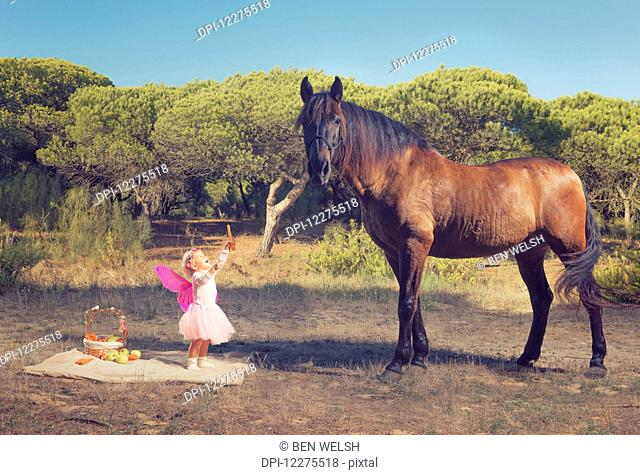 Young girl with pink ferry wings and a brown horse; Tarifa, Cadiz, Andalusia, Spain