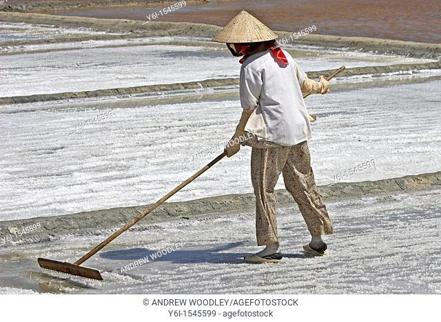 Woman in conical hat rakes salt loose from the surface of a salt pond Vietnam