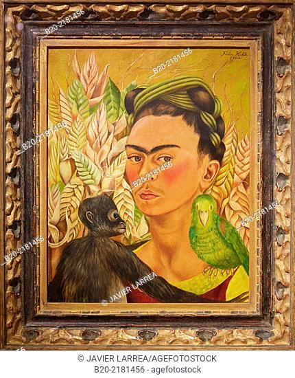 Autorretrato con chango y loro. Frida Kahlo. Museo de Arte Latinoamericano de Buenos Aires. MALBA. Fundación Costantini. Buenos Aires. Argentina