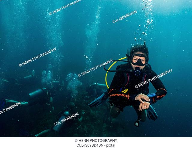 Underwater view of small group of group of divers waiting at the mandatory 5 meter safety stop, Phuket, Thailand